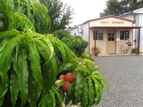 Gully Gardens - Accommodation Port Macquarie