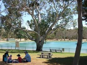 Naracoorte Nature Park and Swimming Lake - Accommodation Port Macquarie
