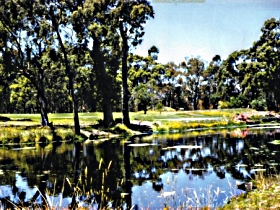Smithton Country Club - Accommodation Port Macquarie