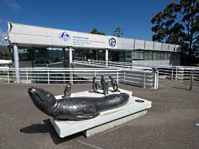 Australia's Antarctic Headquarters - Accommodation Port Macquarie