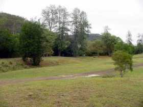 Brooyar State Forest - Accommodation Port Macquarie