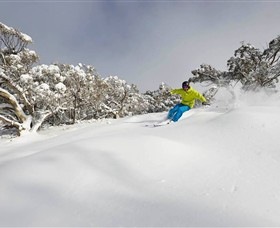 Mt Buller and Mt Stirling Alpine Resort - Accommodation Port Macquarie