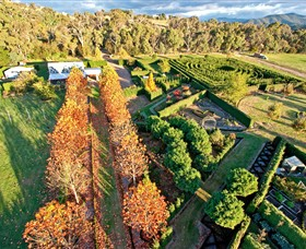 High Country Maze - Accommodation Port Macquarie