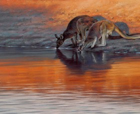 Steve Morvell Wildlife Art - Accommodation Port Macquarie