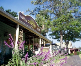 Passionfish Candles - Accommodation Port Macquarie