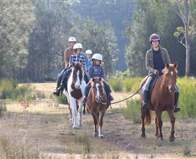 Horse Riding at Oaks Ranch and Country Club - Accommodation Port Macquarie