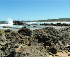 Coastal Walks - Bermagui - Accommodation Port Macquarie