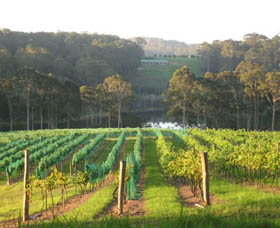 Tilba Valley Wines - Accommodation Port Macquarie