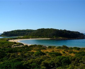 Broulee Island Walk - Accommodation Port Macquarie