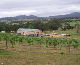 Villa d Esta Vineyard - Accommodation Port Macquarie