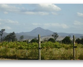 Ironbark Ridge Vineyard - Accommodation Port Macquarie