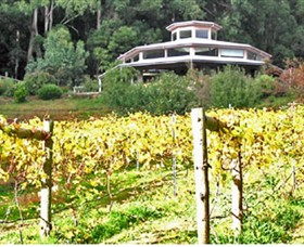 Peveril Vineyard/Beechy Berries - Accommodation Port Macquarie