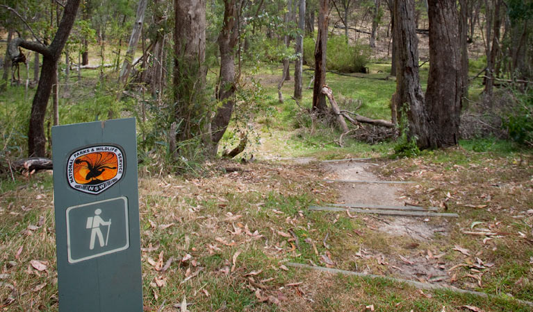 Moolarben picnic area - Accommodation Port Macquarie