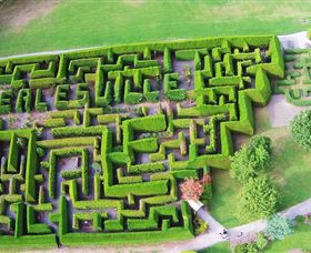 Hedgend Maze and Healesville Laser Sport - Accommodation Port Macquarie