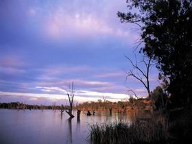 Loch Luna Game Reserve and Moorook Game Reserve - Accommodation Port Macquarie