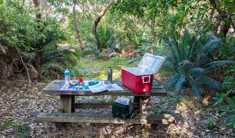 Little Llangothlin picnic area - Accommodation Port Macquarie