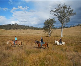 Chapman Valley Horse Riding - Accommodation Port Macquarie