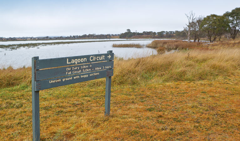 Lagoon Circuit walking track - Accommodation Port Macquarie