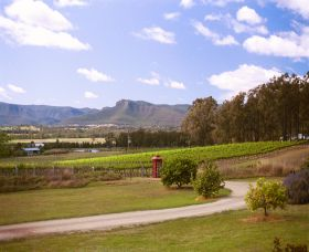 Catherine Vale Wines - Accommodation Port Macquarie