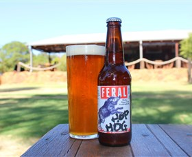 Feral Brewing Company - Accommodation Port Macquarie