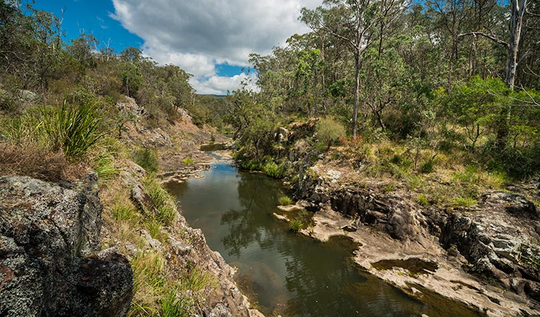 Koreelah National Park - Accommodation Port Macquarie