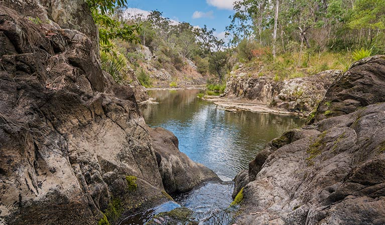 Gorge walking track - Accommodation Port Macquarie