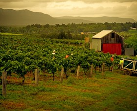 Around Hermitage Wine and Food Trail Hunter Valley - Accommodation Port Macquarie