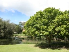 Hervey Bay Botanic Gardens - Accommodation Port Macquarie