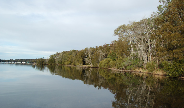 Lake Macquarie State Conservation Area - Accommodation Port Macquarie