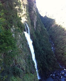 Ellenborough Falls - Accommodation Port Macquarie