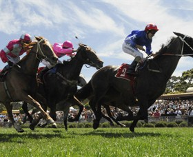 Moruya Racecourse - Accommodation Port Macquarie