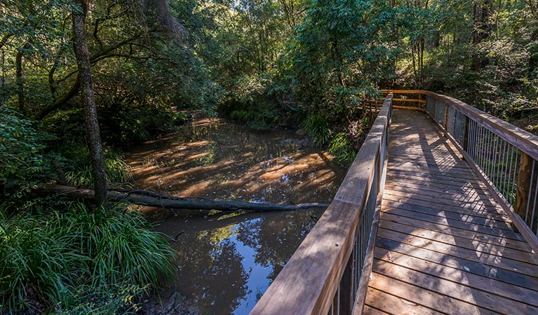 Ms Kellys walking track - Accommodation Port Macquarie