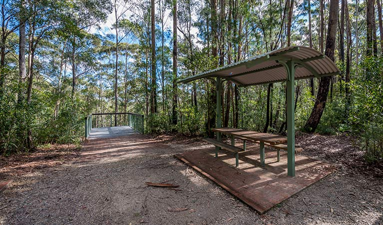 Big Nellie lookout and picnic area - Accommodation Port Macquarie