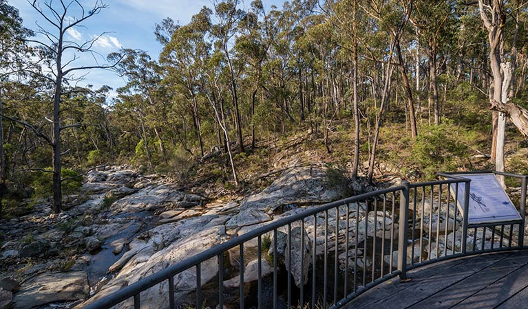 Myanba Gorge walking track - Accommodation Port Macquarie