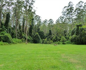 Kerewong State Forest - Accommodation Port Macquarie