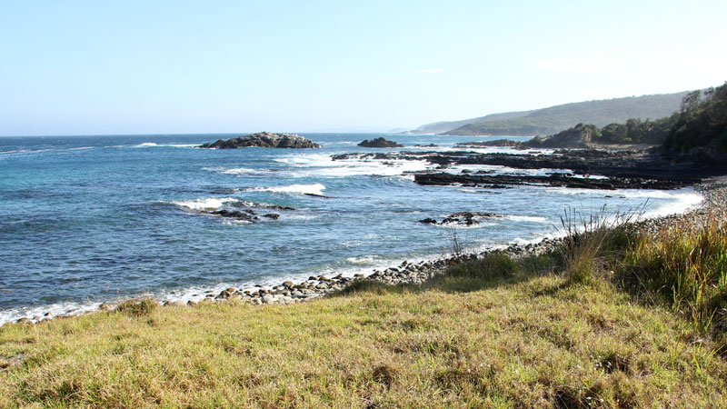 Mimosa Rocks National Park - Accommodation Port Macquarie