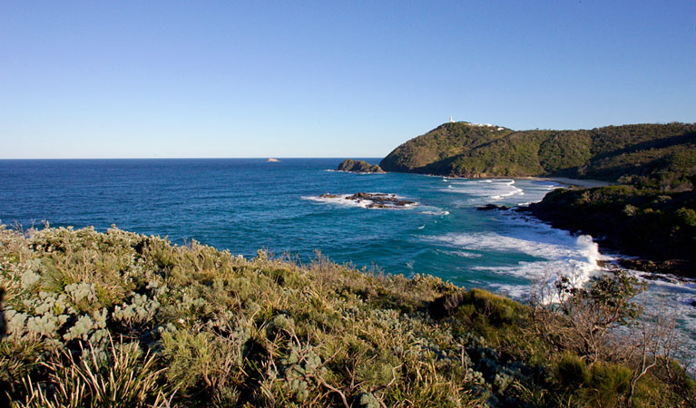 Smoky Cape walking track - Accommodation Port Macquarie