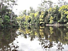 Arthur River - Accommodation Port Macquarie