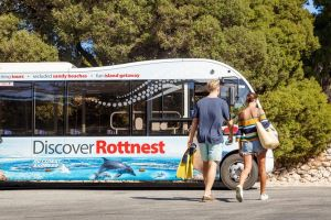 Rottnest Island Tour from Perth or Fremantle including Bus Tour - Accommodation Port Macquarie