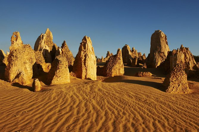 Pinnacles Day Trip from Perth Including Yanchep National Park - Accommodation Port Macquarie
