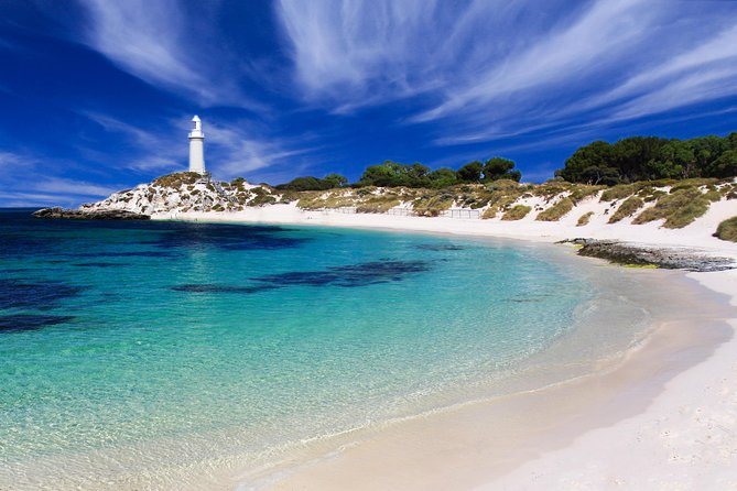 Rottnest Island Grand Tour Including Lunch and Historical Train Ride - Accommodation Port Macquarie