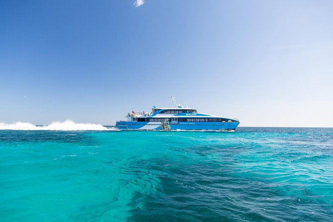 Fremantle to Rottnest Island Roundtrip Ferry Ticket - Accommodation Port Macquarie