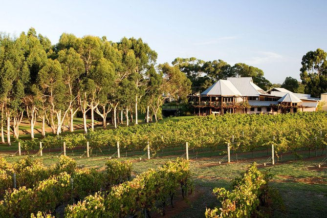 Margaret River and Geographe Bay Region Day Trip from Perth - Accommodation Port Macquarie