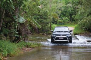 The Pioneer Valley and Eungella National Park - Accommodation Port Macquarie