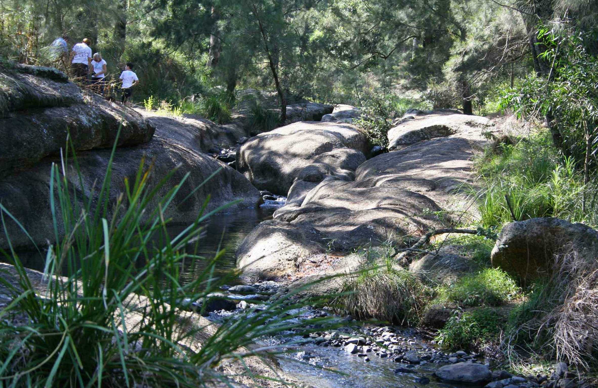 Towarri National Park - Accommodation Port Macquarie