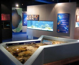 Marine and Freshwater Discovery Centre - Accommodation Port Macquarie