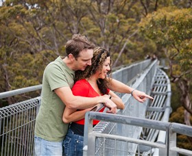 Valley of the Giants Tree Top Walk - Accommodation Port Macquarie
