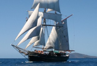 Australian Tallship Cruises - Accommodation Port Macquarie