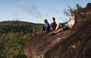 Cooktown Aboriginal Art Tours - Accommodation Port Macquarie