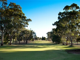 Loxton Golf Club - Accommodation Port Macquarie